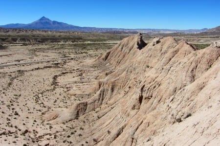 Cerdas, Bolivia